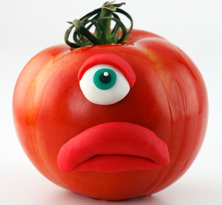 żródło: http://eatdrinkbetter.com/2011/06/15/mutant-tomatoes-a-gmo-discussion/